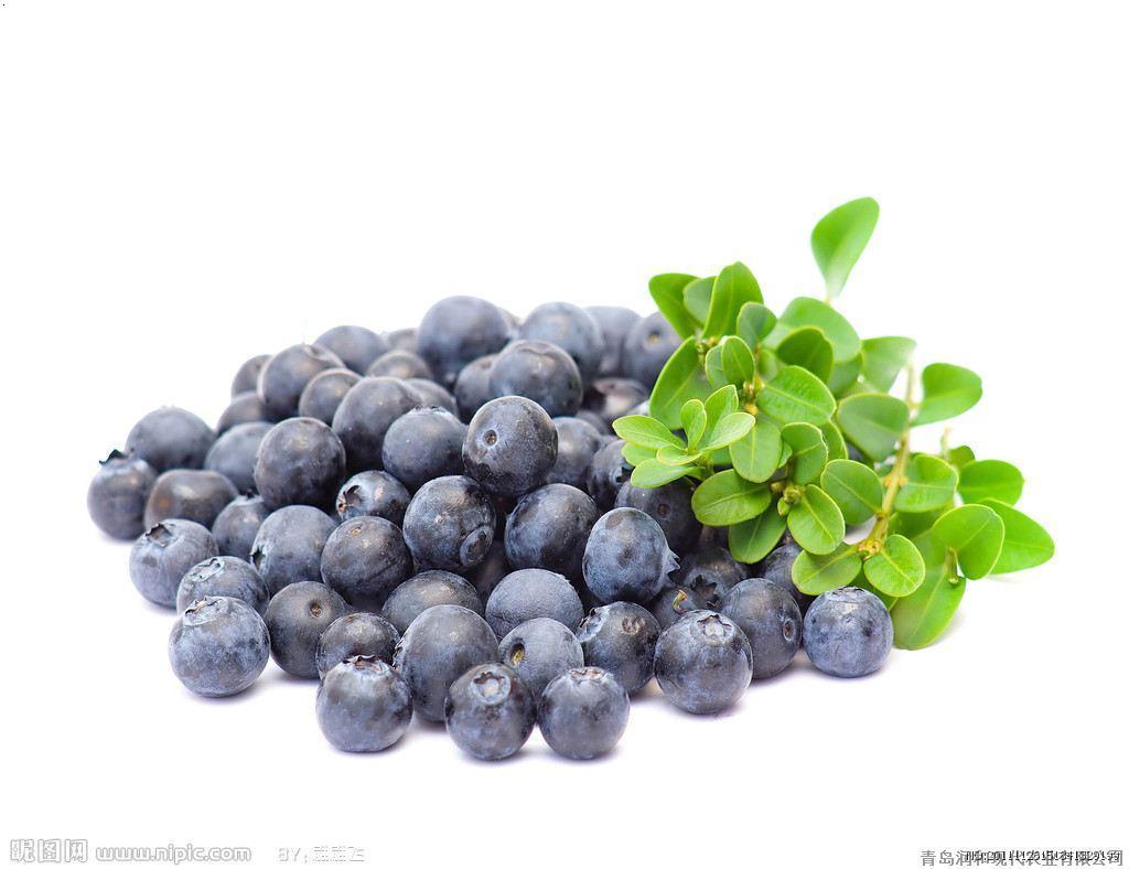 青岛润和现代农业有限公司是蓝莓干红酒