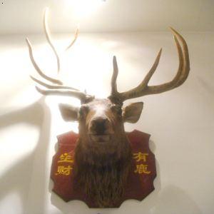 彩铅手绘鹿头 壁纸