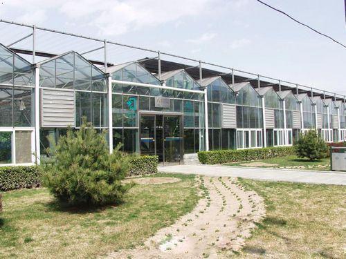 鼎鑫温室 河南玻璃温室品牌 河南玻璃温室生产厂