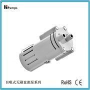 自吸式无刷直流泵WSDC-02