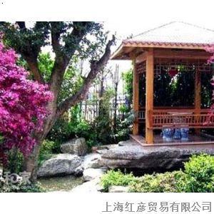 手绘庭院灌木素材