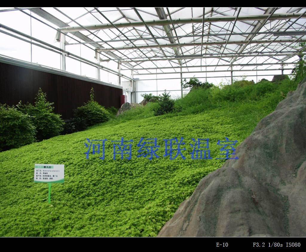 郑州科研温室