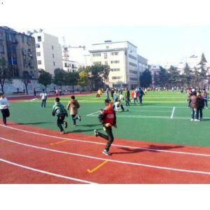 【安陆市v小学小学透气型小学及人造草坪足球场几跑道上海是年图片