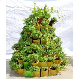 产品展示 大连蔬菜墙|大连园林景观
