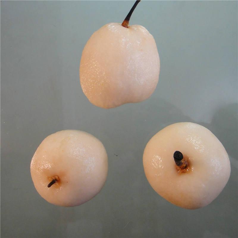 日成晟梨子果蔬脱皮剂