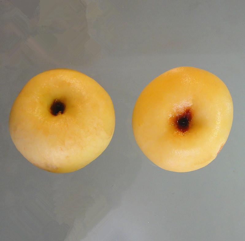 日成晟蘋果果蔬脫皮劑