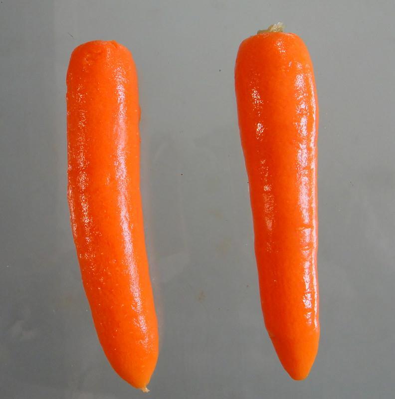 日成晟胡萝卜果蔬脱皮