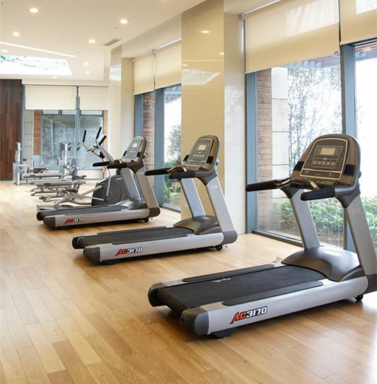 英派斯健身器材 生命动力按摩椅 武汉健身房器械