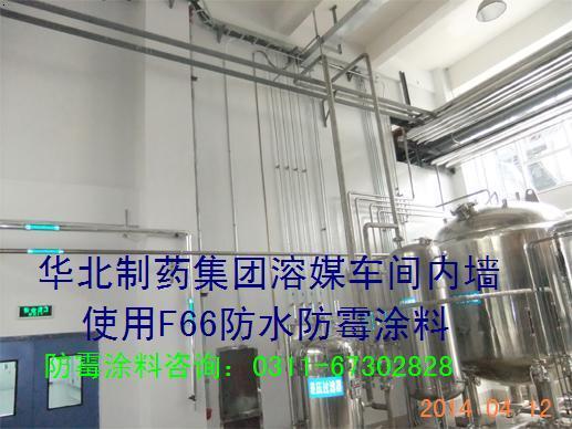 食品厂防霉涂料 食品厂防水防霉油漆 成都食品厂防霉涂料