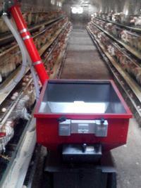 蛋鸡自动喂料机|蛋鸡