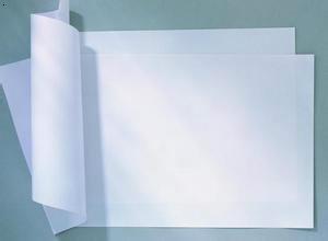 河北造纸业