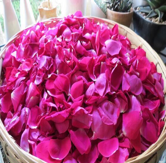 玫瑰花瓣|山东玫瑰花