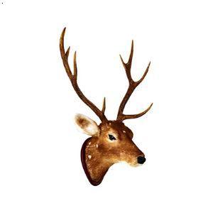 彩铅手绘鹿头唯美