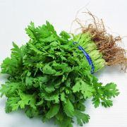 河南蔬菜配送|郑州食材配送|郑州有机蔬菜配送