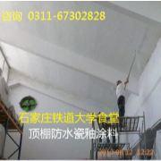 青岛SHF901瓷釉涂料 无毒防霉瓷釉漆 瓷釉漆价格 防瓷涂料全网销售
