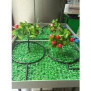 唐山果树灌溉|唐山果树灌溉设备|唐山果树灌溉管件
