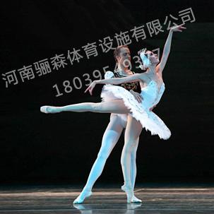 郑州运动地板|郑州舞