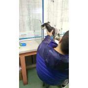 大连猫病专科医院