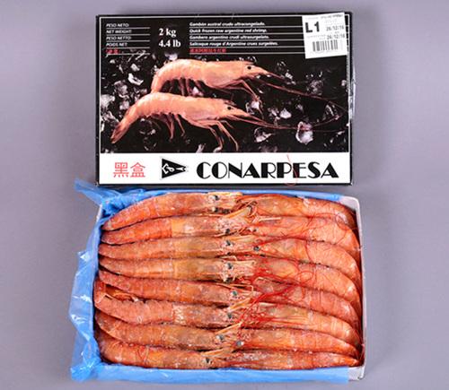 阿根廷红虾  Argentina red shrimp