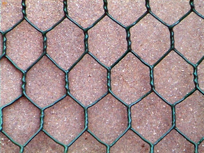 涂塑六角网,河北涂塑