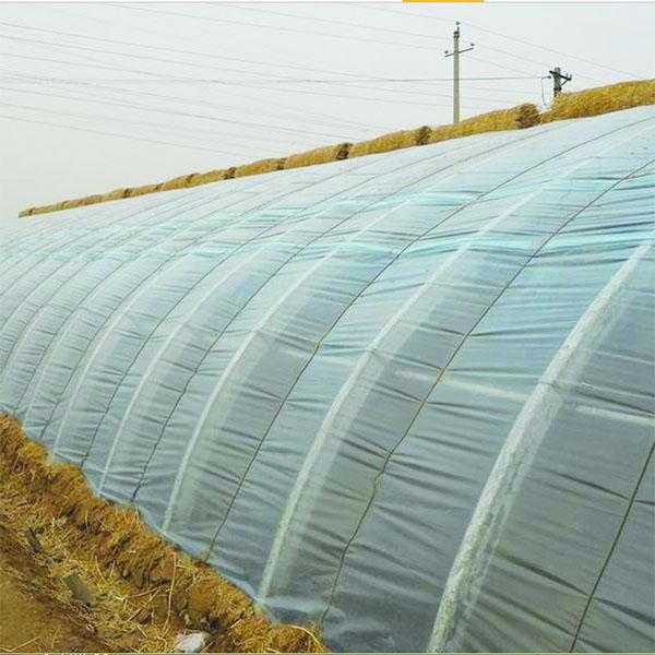 农用聚乙烯地膜(含小