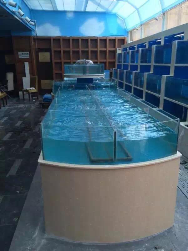 南京海鲜池定做|南京