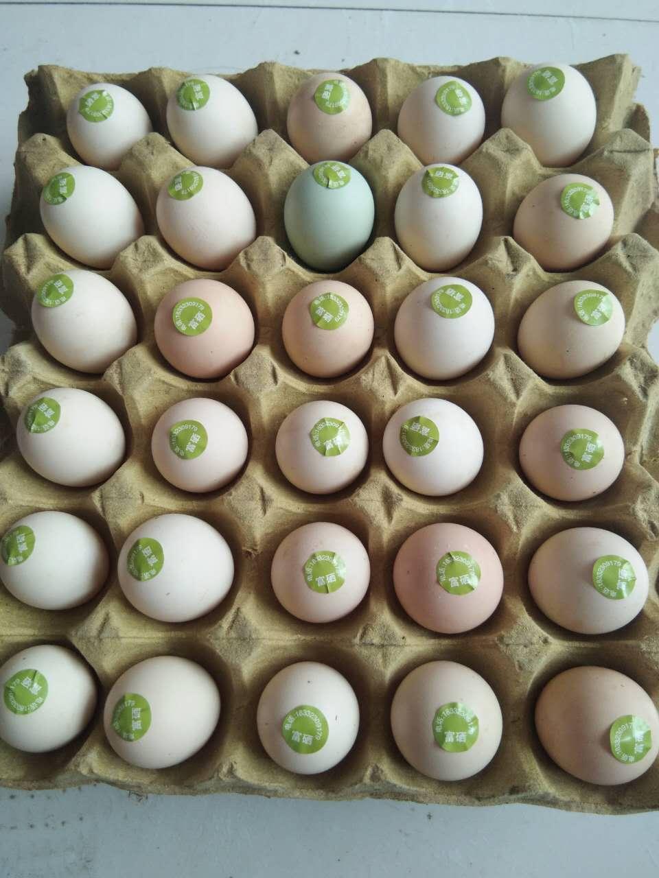 无抗富硒鸡蛋