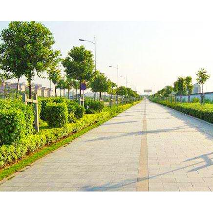 衡水市政绿化设计公司