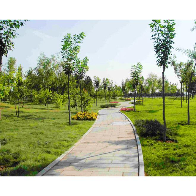 衡水园林绿化