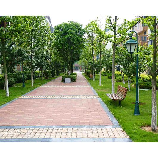 冀州园林绿化