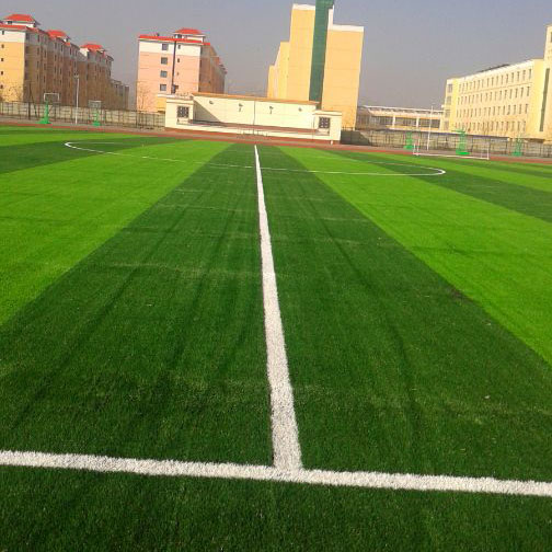 足球场系列(1)