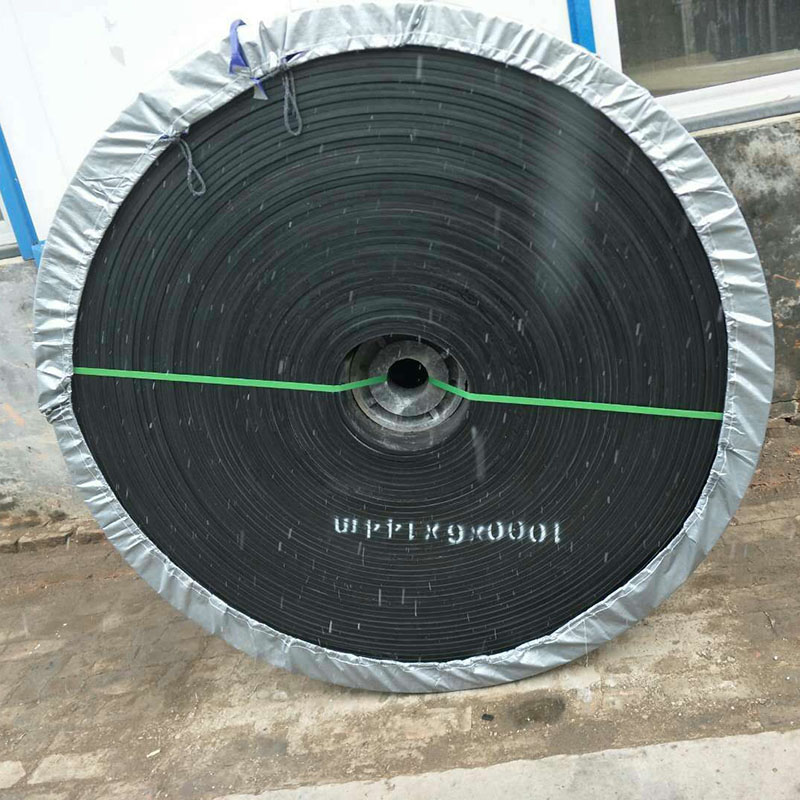 橡胶输送带(6)