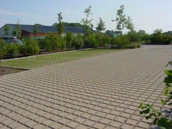 卢龙草坪砖
