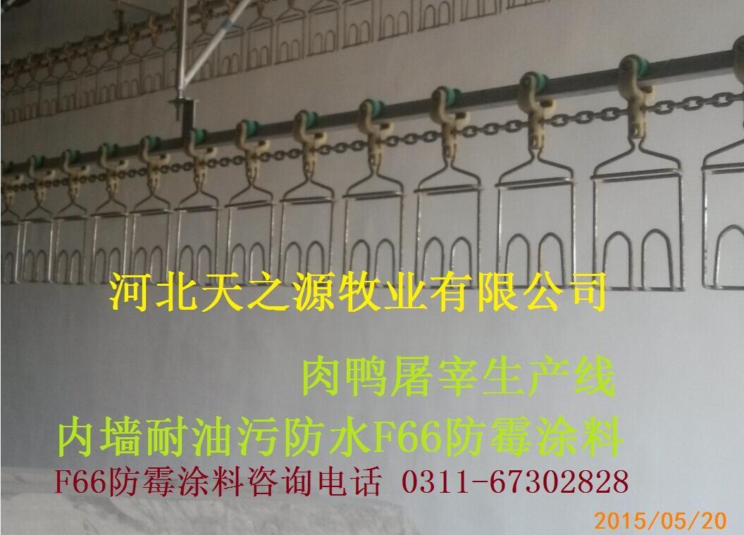 重庆食品车间用防霉涂料|酿造车间防霉油漆|f66防霉涂料|抑菌防水防霉涂料
