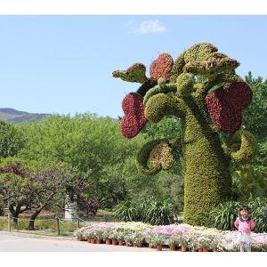 产品首页 礼品,工艺品,饰品 雕塑 植物造型花坛