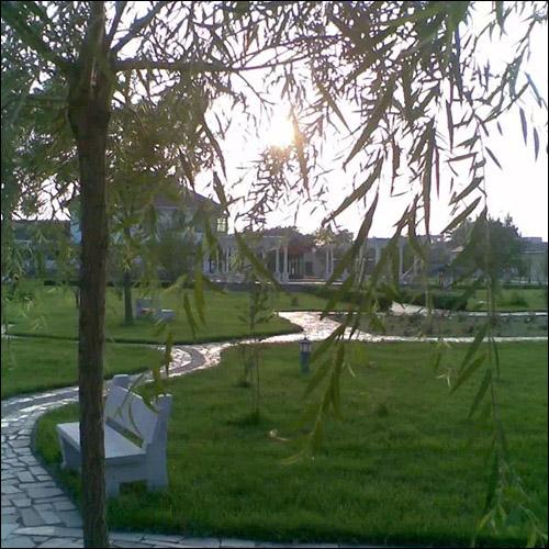 唐山滦县附近的敬老院