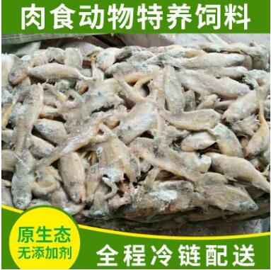 冷冻鱼类产品