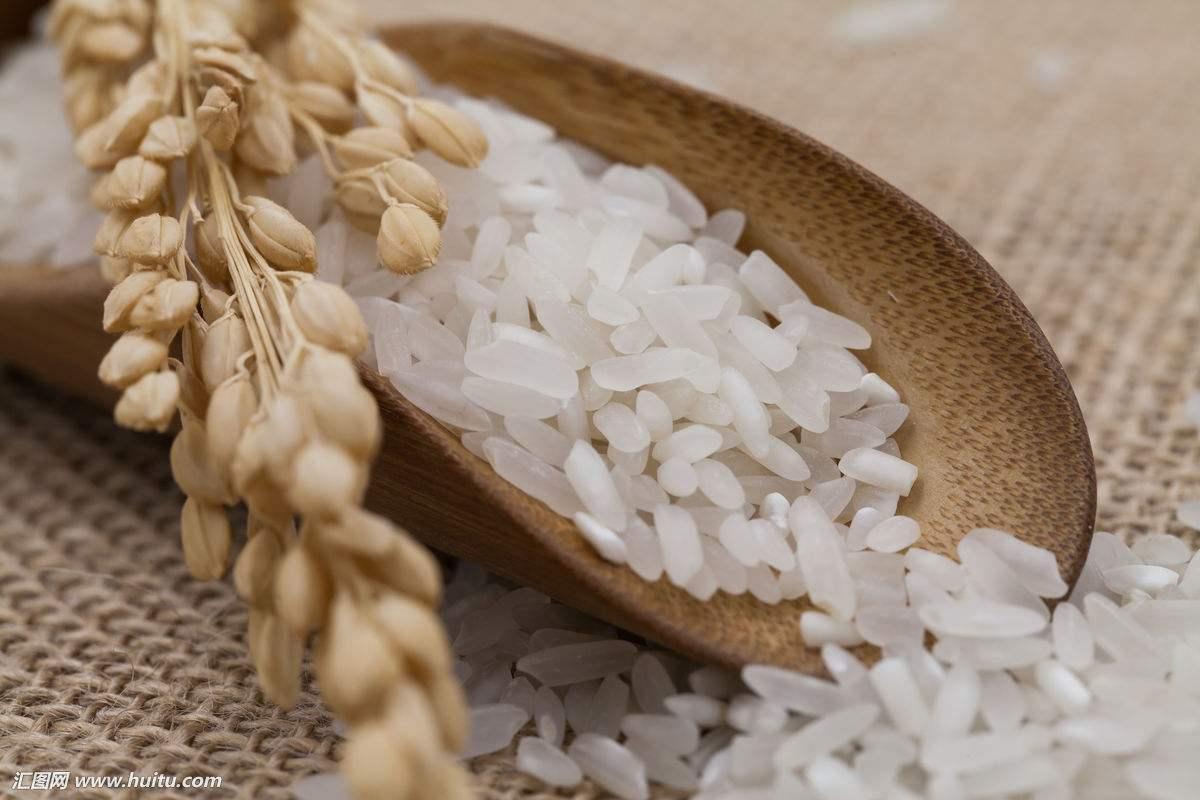 唐山大米价格
