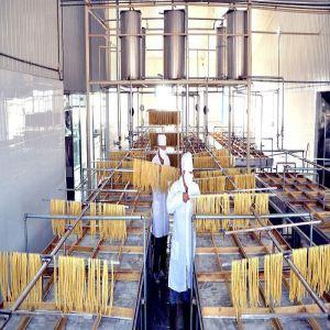 F66防霉防水涂料 贵州酒厂酿制车间防霉内墙涂料 食品级防霉涂料