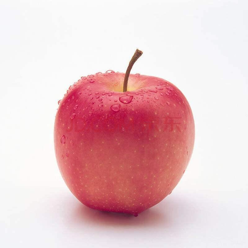 唐山苹果报价-唐山农