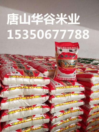 唐山优质大米厂
