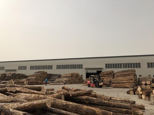 唐山木材批发