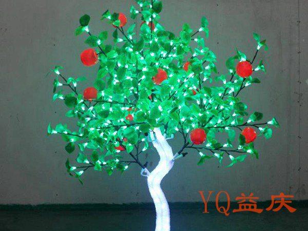 苹果树1.5米高1.2米宽