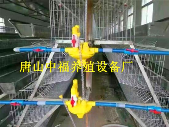 养鸡设备/唐山养鸡设