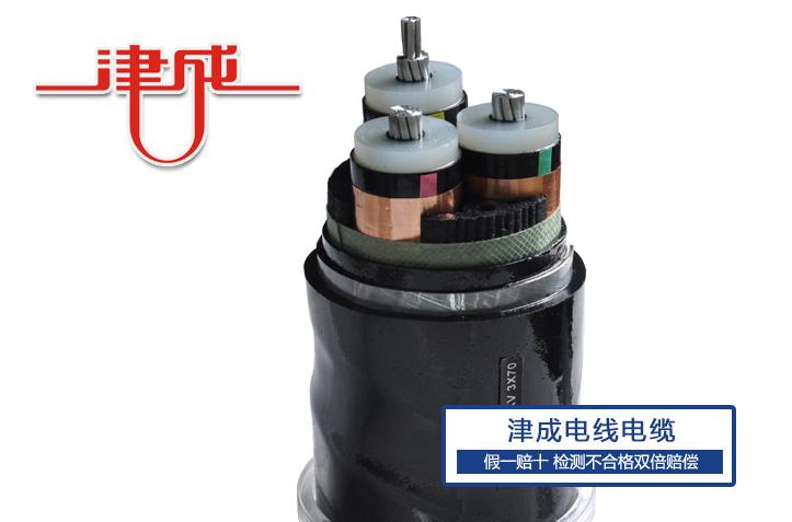 天津津成|河北电线电缆厂家|电线电缆质量