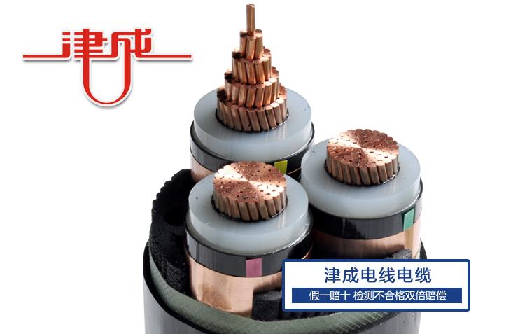 天津津成|河北电线电缆厂家|河北电线电缆采购