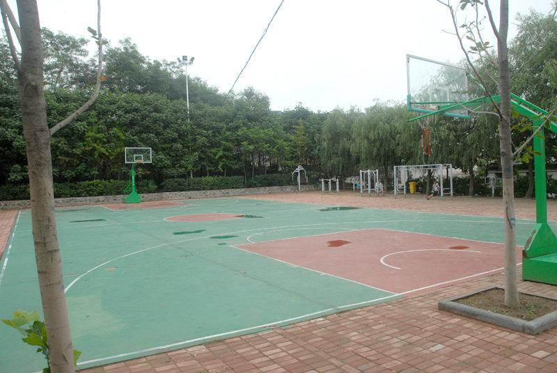 岛上还有篮球场、健身器材等,供游客使用。
