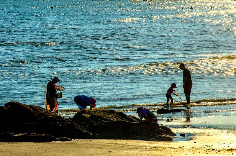 大海蕴含着丰富的宝藏,海滩上、礁石边都是游人海猎的好地方。