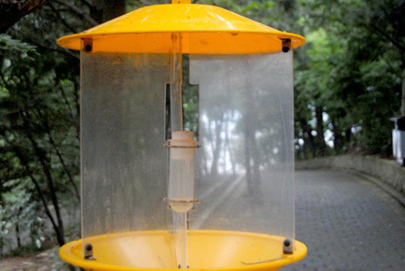 生物灭蝇灯,保证了游客在獐岛不受蚊蝇困扰。