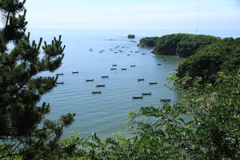 岛上风光秀丽,站在山上俯视獐岛,处处都是一幅美景。